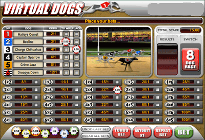 Virtual Dogs Betting Options